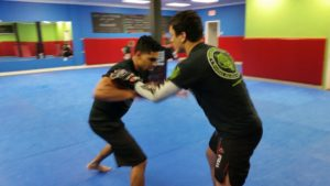 MMA Clinch Fighting