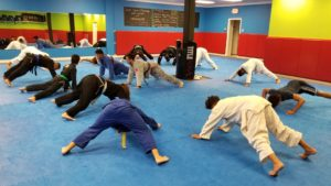 Dauntless BJJ Newark DE